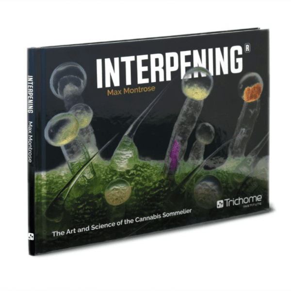 Interpening Book Cover